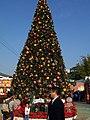 Ocean Park Christmas tree.jpg