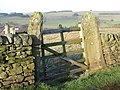 Old field gate - geograph.org.uk - 628120.jpg