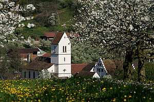 Oltingen - Reformed parish church of St. Niklaus