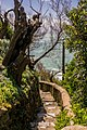 One of the many little and lovely paths in Biarritz - panoramio.jpg