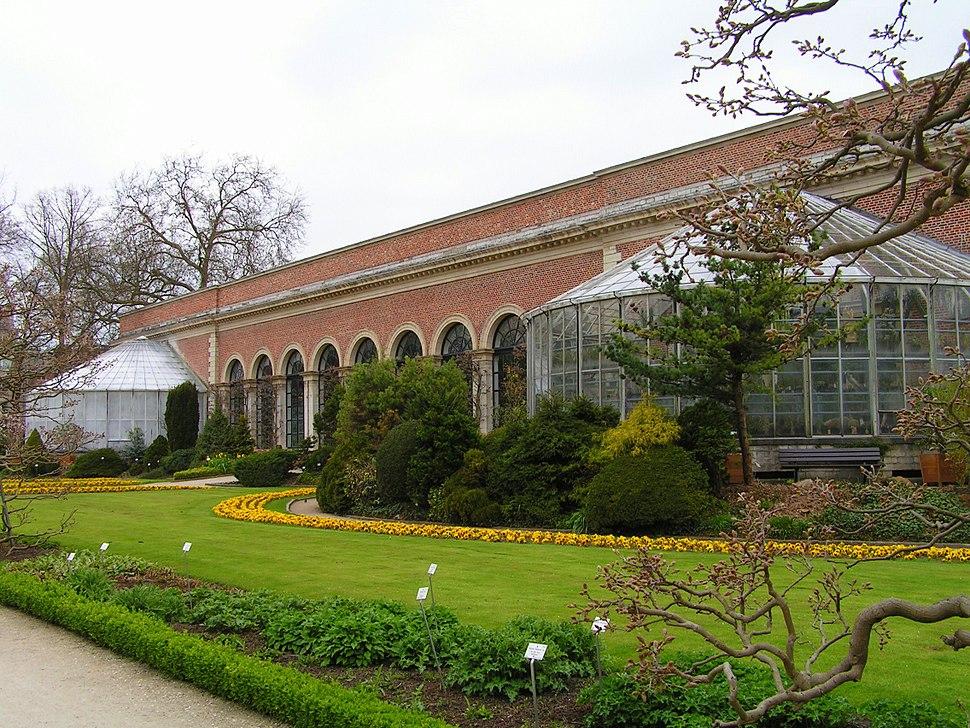 Orangerie Kruidtuin Leuven