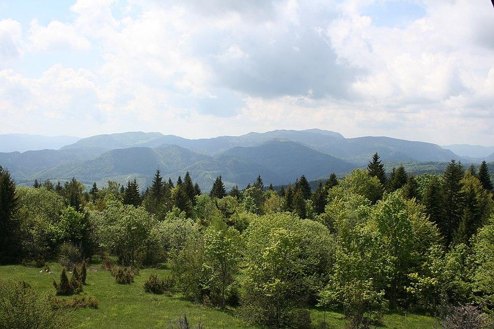 Osmatračnica na Tisovom brdu, Sekulić, Tara 013
