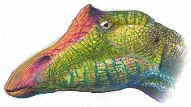 Ouranosaurus head