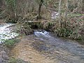 Over the stream - geograph.org.uk - 1712667.jpg