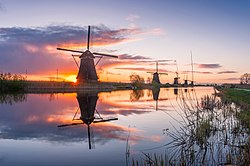 A view of Kinderdijk at sunrise
