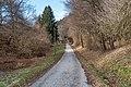 Pörtschach Winklern Waldweg Kalkseilbahn Rampe 20012020 8083.jpg