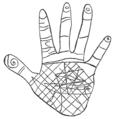 PSM V62 D047 Indian petroglyph from kejemkoojic rock nova scotia.png