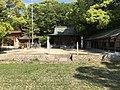 Paddy fields and Osajikiden Hall of Oyamazumi Shrine.jpg