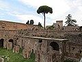 Palatino - panoramio (13).jpg