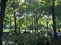 Parc La Fontaine 15.jpg
