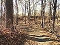 Park Along Aberjona River - Winchester, MA - DSC04238.JPG