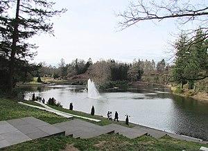 Park Berg en Bos - The forest pond