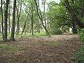 Park Dranske-Lancken - Park 5.JPG