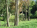 Park w Solec-Zdroj.jpg