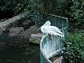 Parque de Los Pinos (Plasencia) 09.jpg