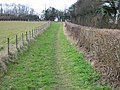 Path at edge of field - geograph.org.uk - 645288.jpg