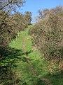 Path up Crimson Hill - geograph.org.uk - 354075.jpg