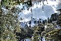 Paysage dans le parc national de chelia.jpg