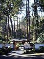 Pdx washpark japanesegarden lowerentrance.jpg