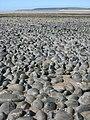 Pebbles near Zulu Bank - geograph.org.uk - 1358072.jpg
