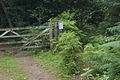 Permissive footpath junction, Yealand Hall Allotment - geograph.org.uk - 1451856.jpg