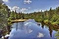 Peshekee River - panoramio.jpg