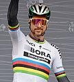 Peter Sagan Tour de France 2017.jpg