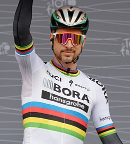 Peter Sagan Tour de France 2017.jpg