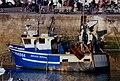 Petit chalutier de pêche côtière.jpg