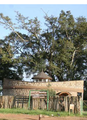 Photograph of Koitalel Arap samoei monument- side view 01.png