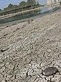 PikiWiki Israel 6318 Dry land.JPG