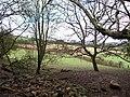 Pile of stones near Bronllys. - geograph.org.uk - 346749.jpg