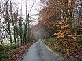Pilgrim's Way - geograph.org.uk - 100367.jpg