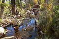 Pine Creek Canyon 5.jpg
