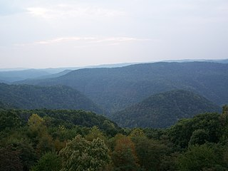 Bluestone National Scenic River 4,310 acres in West Virginia (US) managed by the National Park Service