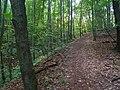 Pirna, Germany - panoramio (450).jpg