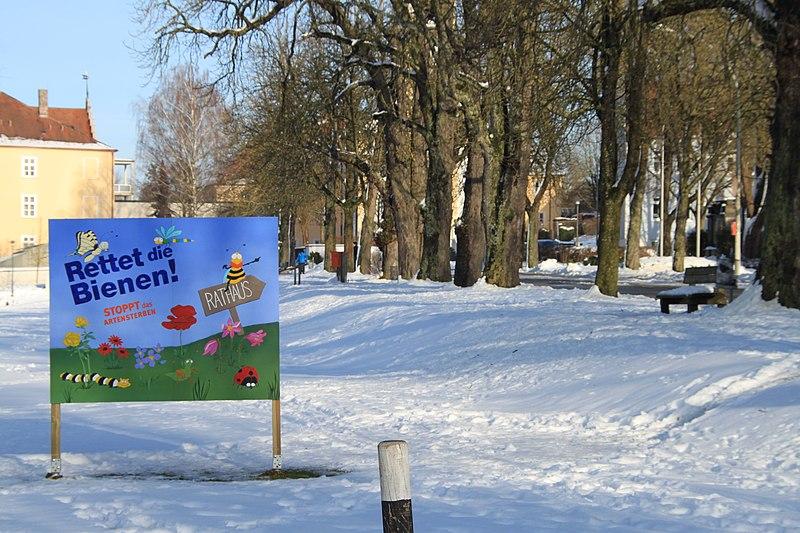 """File:Plakat zum bayerischen Volksbegehren """"Rettet die Bienen"""".jpg"""