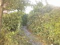 Polweg - panoramio (1).jpg