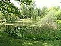Pond, Botanischer Garten München-Nymphenburg - DSC07707.JPG