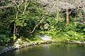 Pond - Tsurugaoka Hachiman-gū - Kamakura, Kanagawa, Japan - DSC08354.JPG