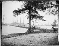 Pontoon bridge across James River - NARA - 524720.tif