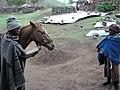 Potso leads his horse through a village (5285770655).jpg