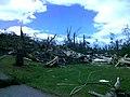 Property and tree damaged by 2011 tornado; Brimfield, MA.jpg