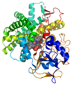 Prostacyclin synthase