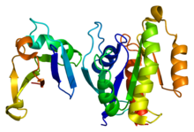Protein RAP1A PDB 1c1y.png