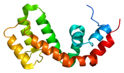 Protein RGS9 PDB 1fqi.png