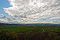 Pulborough Brooks and the Arun Valley, West Sussex, England, April 2011 - Flickr - PhillipC.jpg