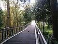 Putrajaya, the Botanical Garden 03.jpg