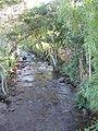 Quebrada agua blanca Berbeo.jpg