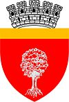 Coat of arms of Onești